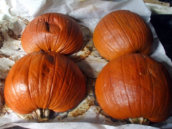 Roasted Pumpkins for Puree