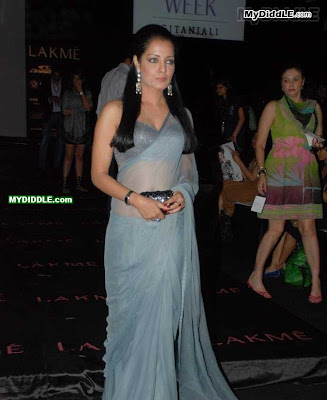 Celina Jaitley in A Sexy Transparent Saree picture