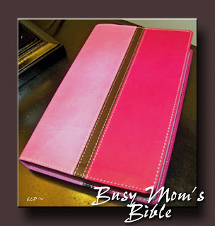 Busy Mom's Bible, Review, Bible for Moms, Zondervan