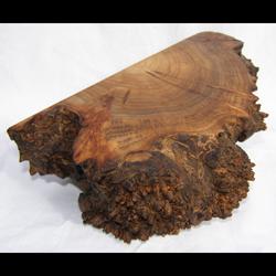 Filbert Burl Box from Eugene, Oregon