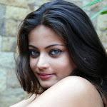 Sneha Ullal Replaces Aishwarya Rai In Hollywood Film