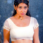 What Will Sexy Shriya Saran Do Now?