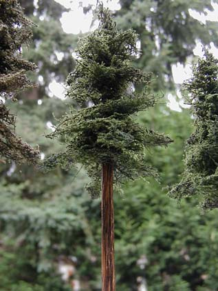 Making Realistic Scale Trees Making Realistic Miniature Trees