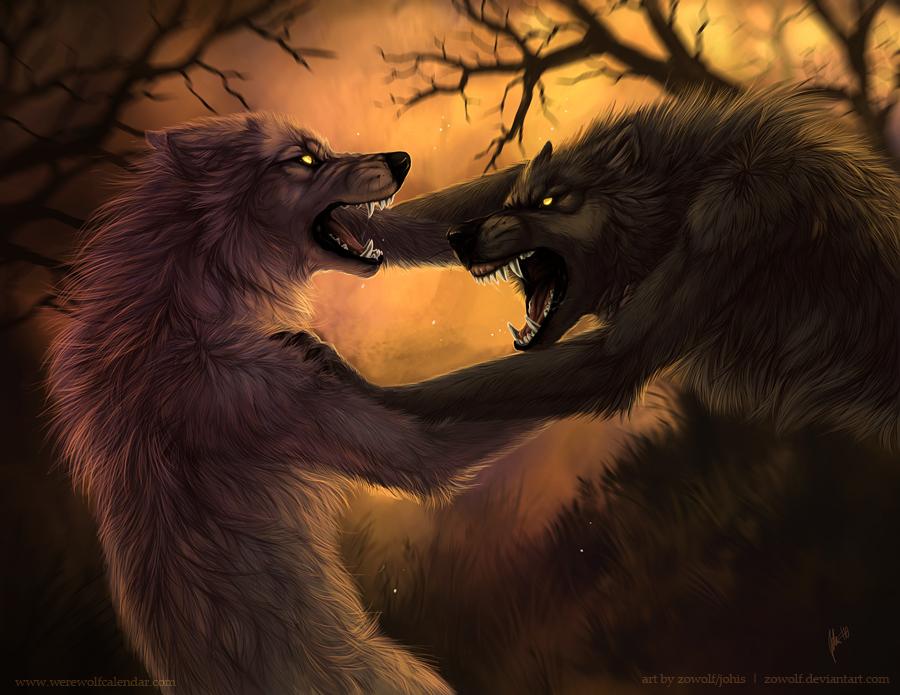 Vampire Vs Werewolf Fighting
