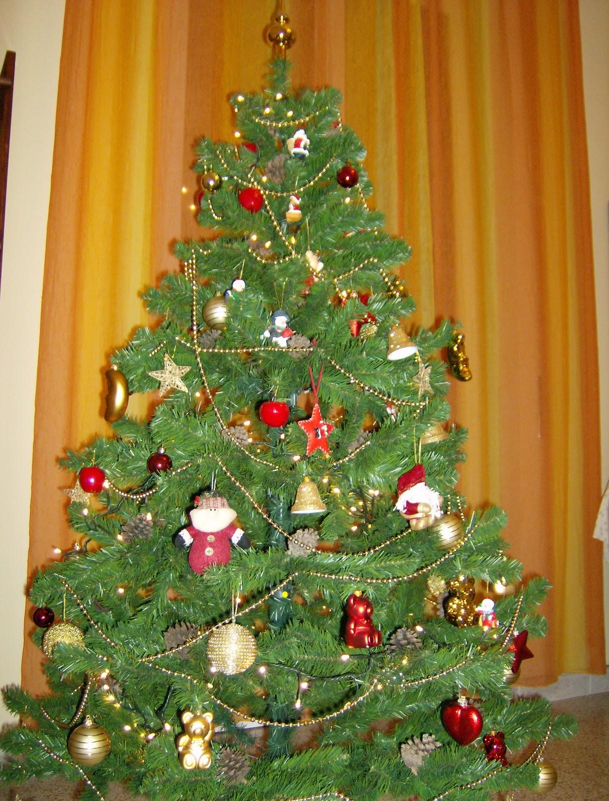 Albero Di Natale 8 Dicembre.Il Mondo E Tutto Il Resto La Vita 8 Dicembre Si Fa L Albero Di
