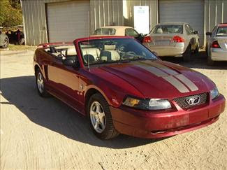 Ford Mustang Info 2004 Ford Mustang 40th Anniversary