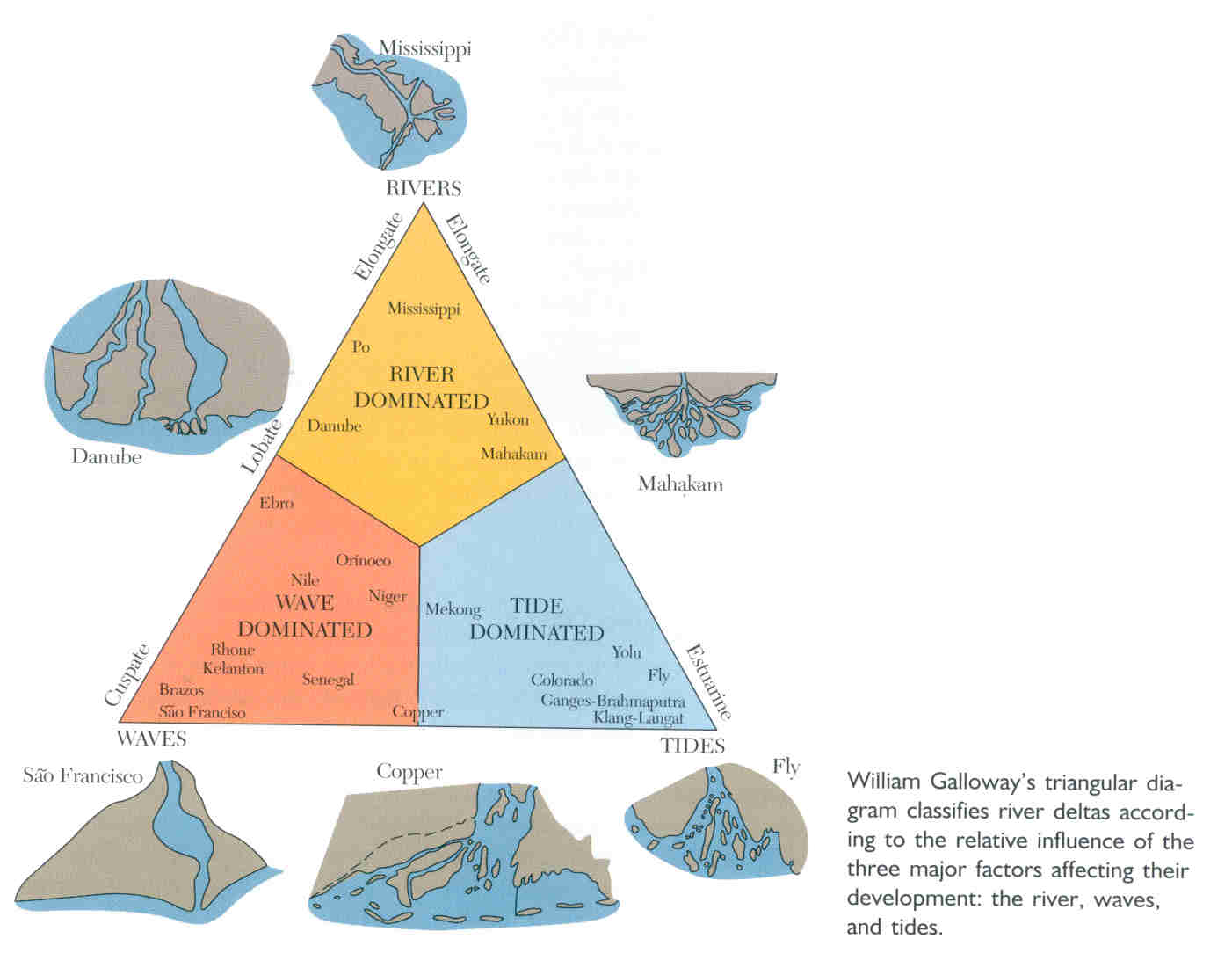 diagram of a delta landform beef cow cut room 611 days 38 40 wednesday november 3 friday