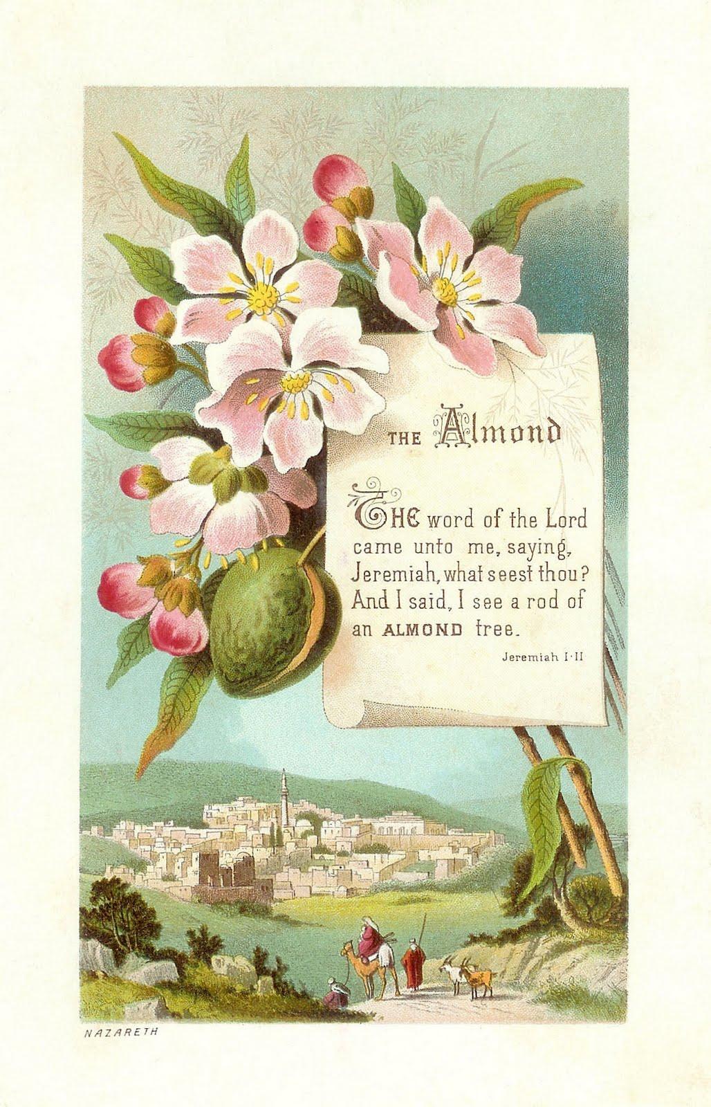 Antique Images: Free Religious Clip Art: Antique Die Cut ...