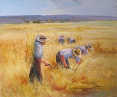 Resultado de imagen de grano de trigo brotando