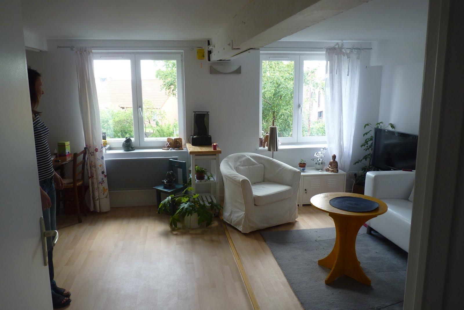 le blog de l 39 accro du feng shui d terminer l 39 orientation de l 39 appartement mon intervention. Black Bedroom Furniture Sets. Home Design Ideas