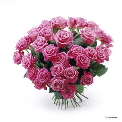 Blomsterbilder gratis