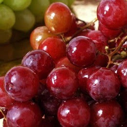 """panduan-cara-budidaya-anggur-merah-pupuk-organik-distributor-nasa-poc-nasa-supernasa-power-nutrition-pestisida-pestona-bvr-glio-natural-nusantara"""