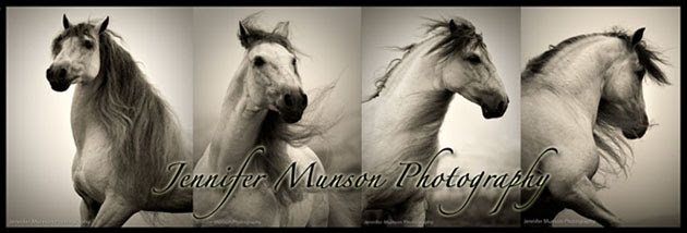 Jennifer Munson Photography