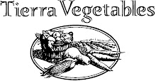 Seasonal Tierra Vegetables: Growing Peanuts