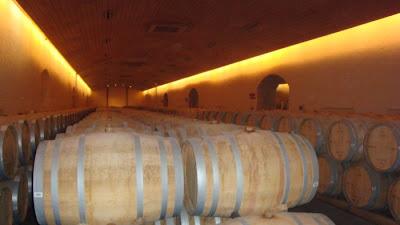 Barris de vinho em vinícola de Santiago do Chile