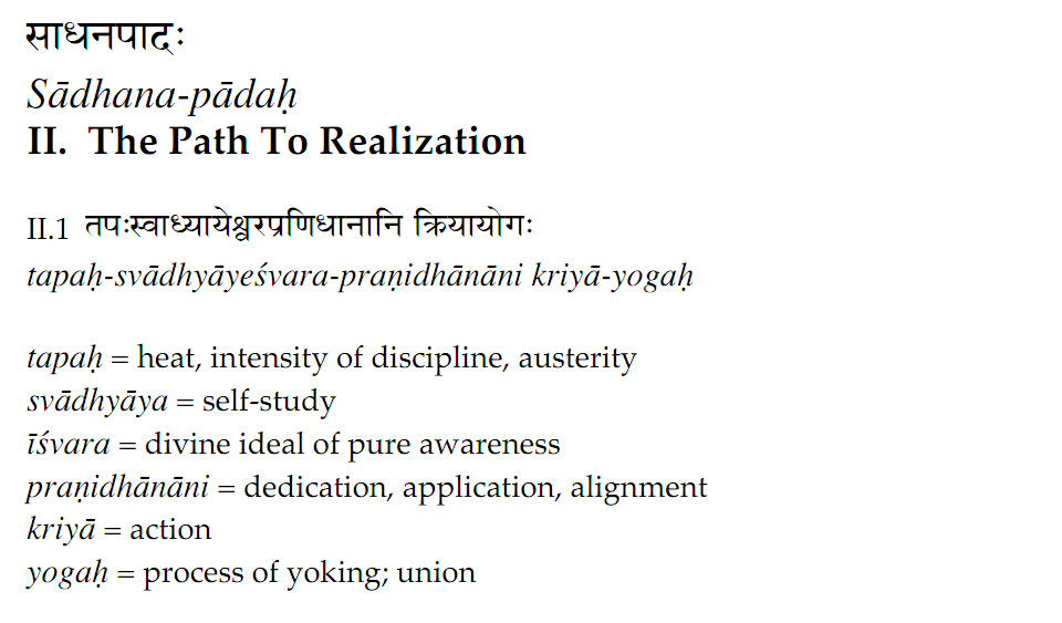 Claudia Yoga Patanjali You Optimist Or When Learning The Sutras Start With Chapter 2