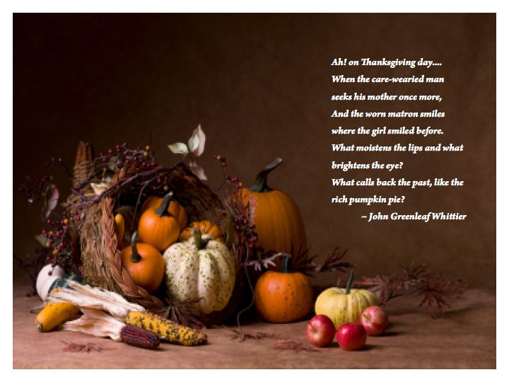 Divinipotent Daily: Happy Thanksgiving!