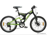 Sepeda Gunung WIMCYCLE VECTOR 20 Inci