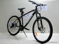 3 Sepeda Gunung ELEMENT POLICE HAWAII 26 Inci