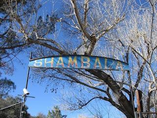 Tippi Hedren Shambala