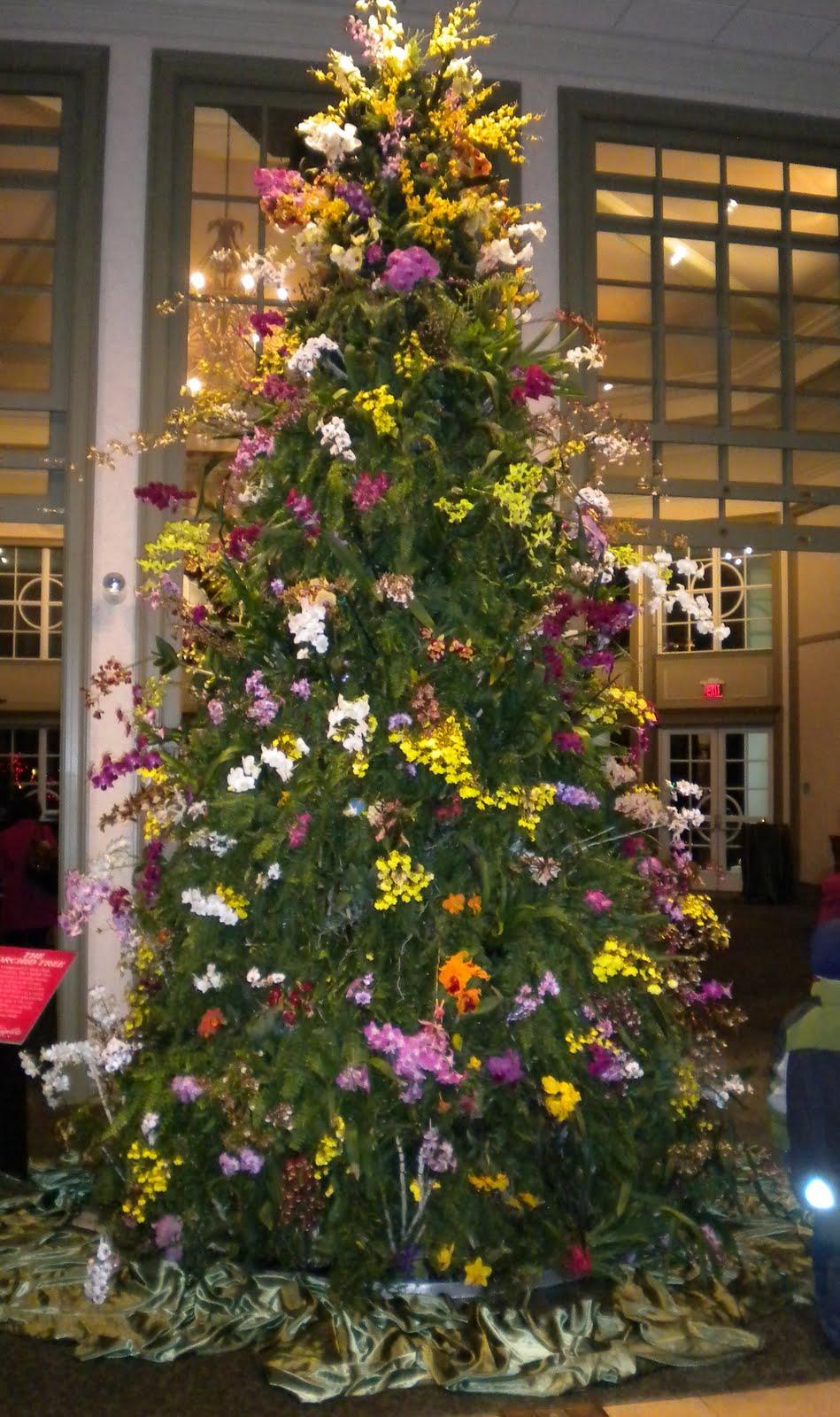 Orchid Christmas Tree.Sherri S Jubilee Daniel Stowe Botanical Garden With