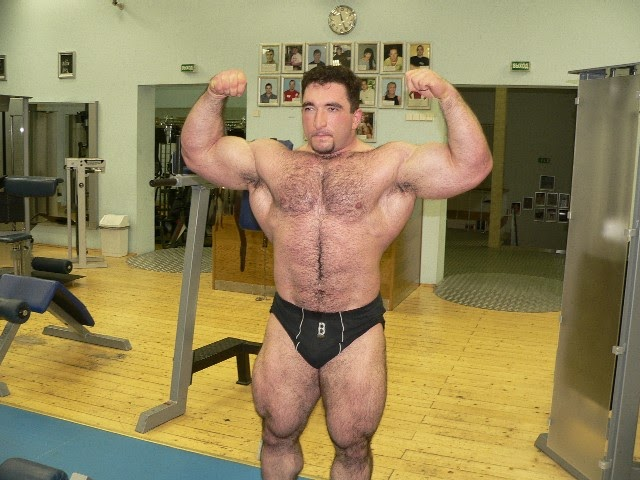 Beefymusclemuscle Com
