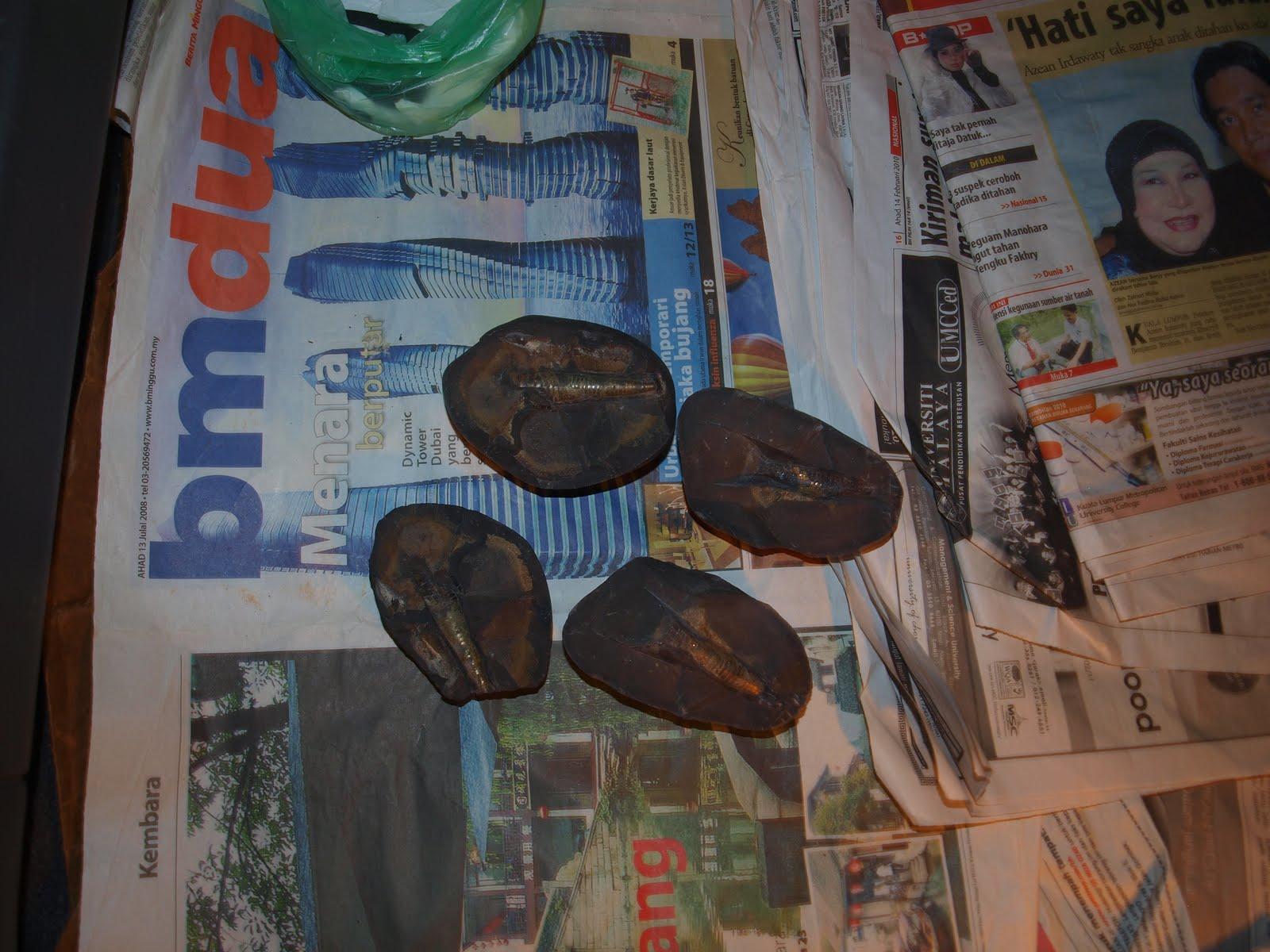 Narapatinantaboga™: Batu Petir