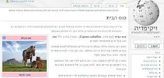 Basic Biblical Hebrew
