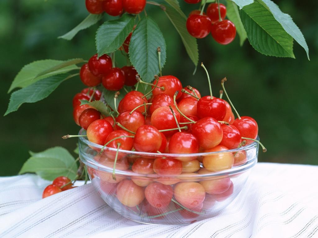 http://3.bp.blogspot.com/_M10zo_ZcksM/TFnNjuJR-pI/AAAAAAAAQ70/FB2As9pJg0Y/s1600/Cherry_wallcoo012.jpg