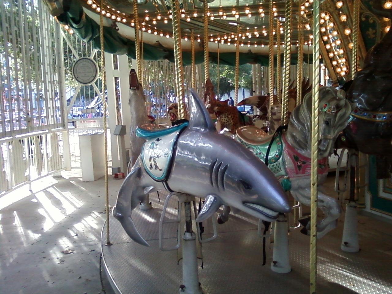 Random Refuge Sj Carousel Arena Green