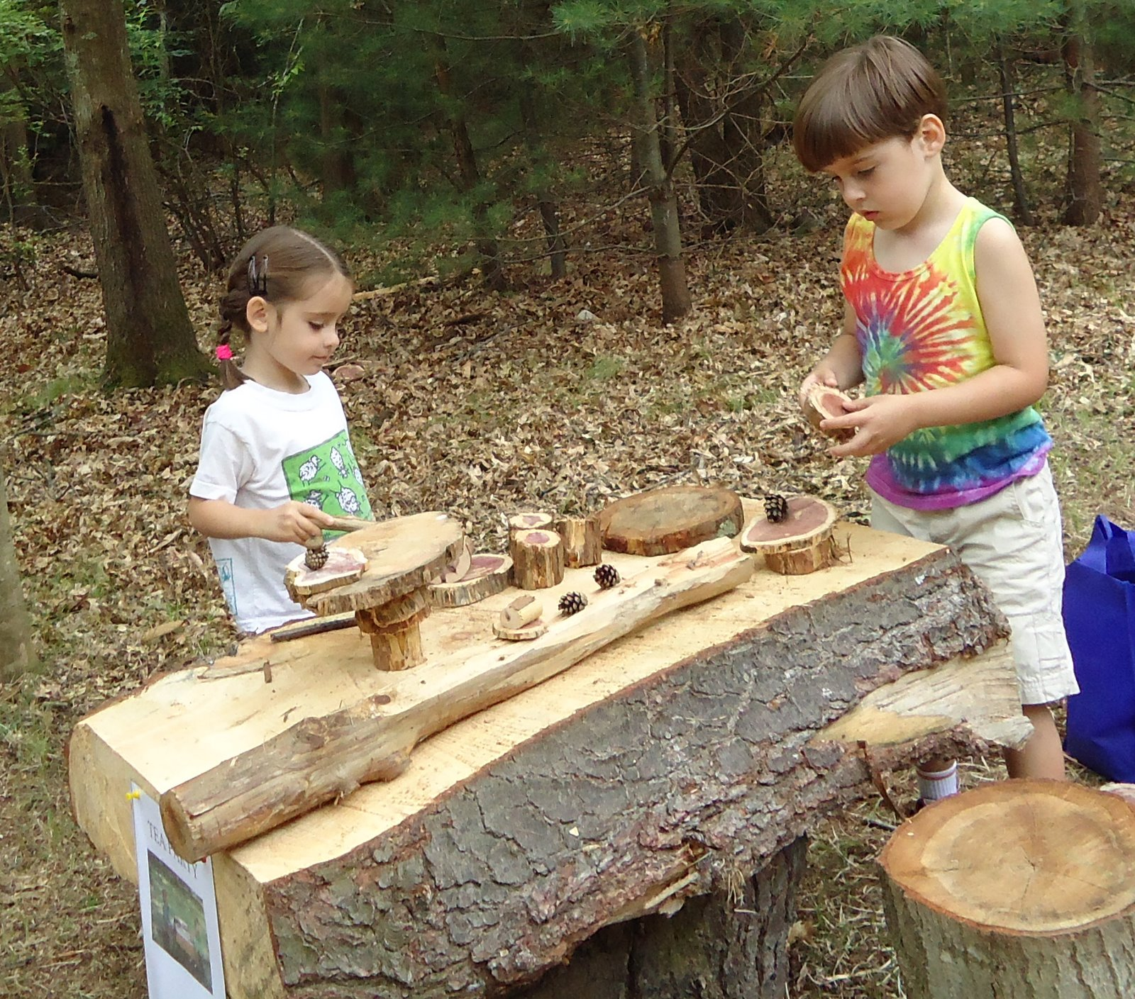 Little Kitchen Westport Ct: The Aspetuck Land Trust Blog: Schine Playspace: Opening Day