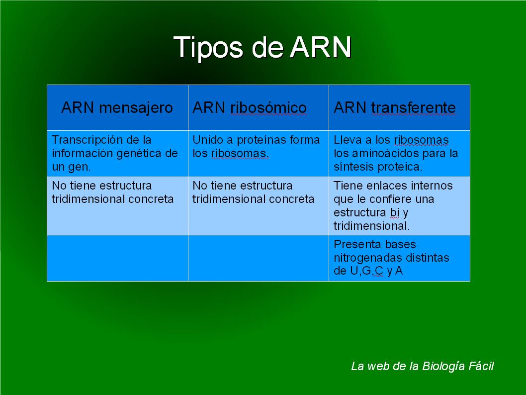 Bioprofe4 tipos de arn for Tipos de estanques para acuicultura