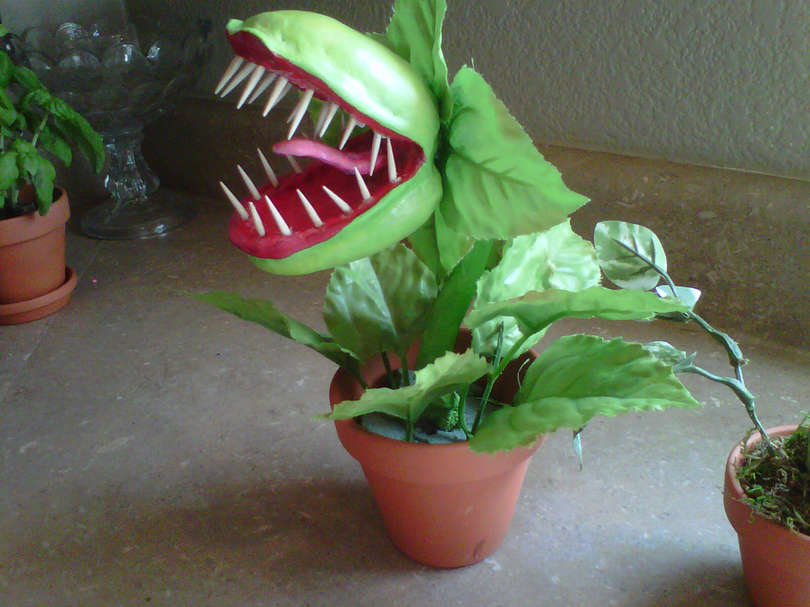 Wicked Things Man Eating Plant