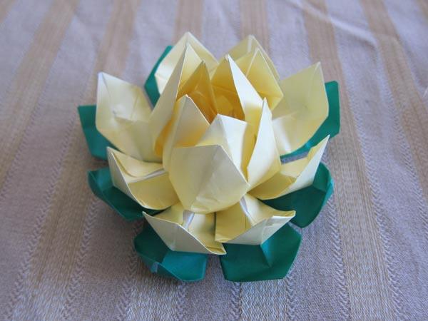 Lotus Origami Instructions
