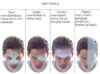 Image Result For Penyebab Sakit Kepala Di Belakang Telinga