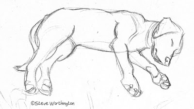 Globspot: Animal sketches made for sculptures