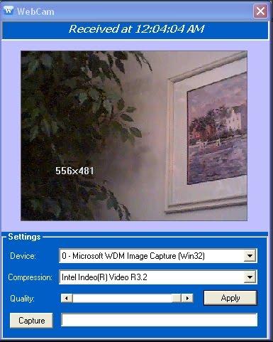 Webcam Spy Taringa 46