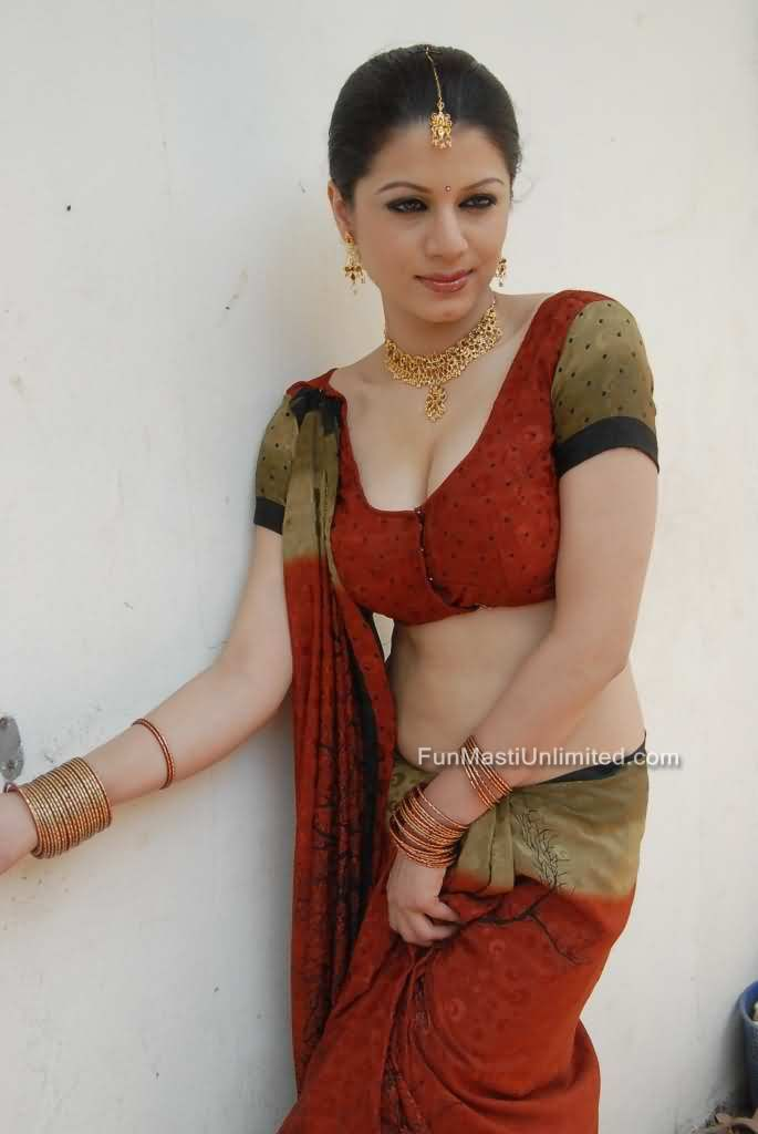 Amisha Patel Cute Wallpapers Richa Arora South Indian Actress In Saree Sexy Pictures