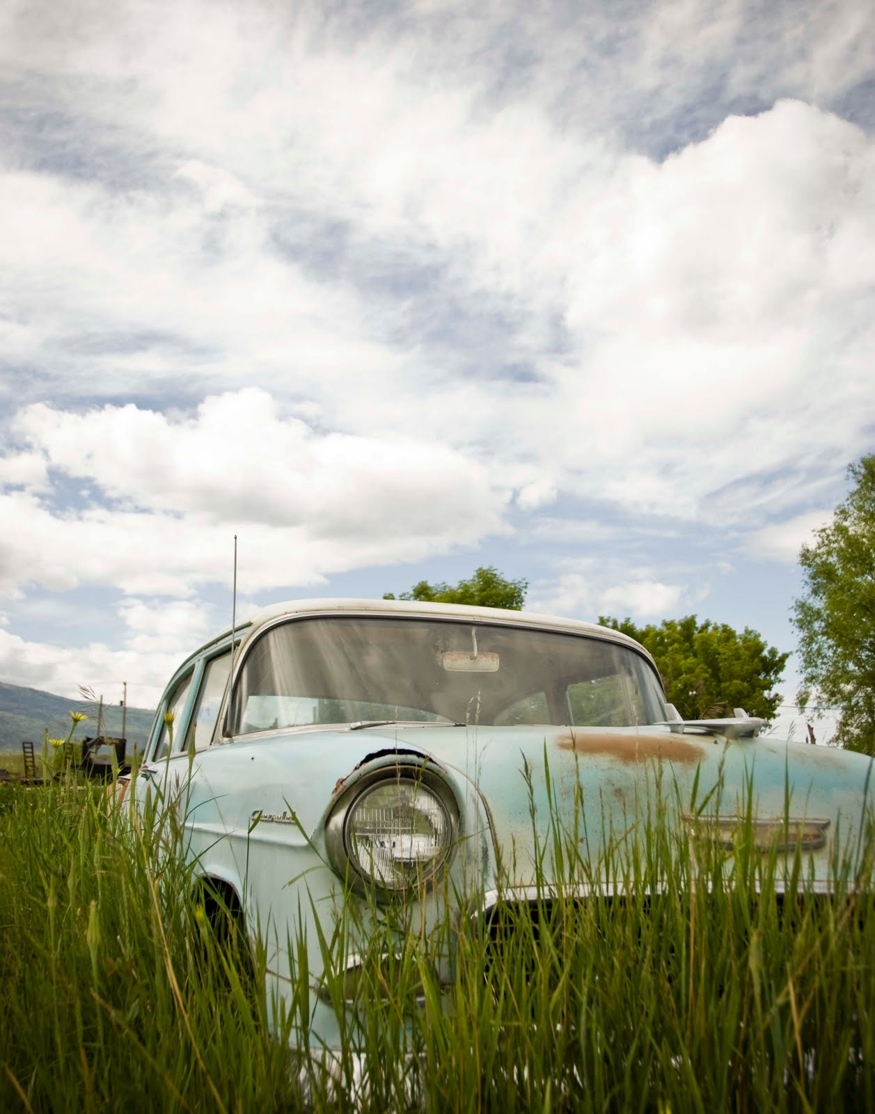 Old Cars In Fields