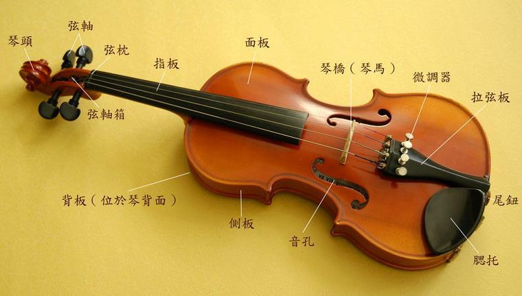 音樂之國: 小提琴的構造圖