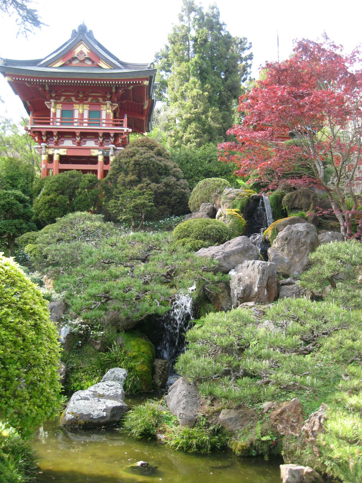 School For Us: Japanese Tea Garden (Day 5 SF Trip