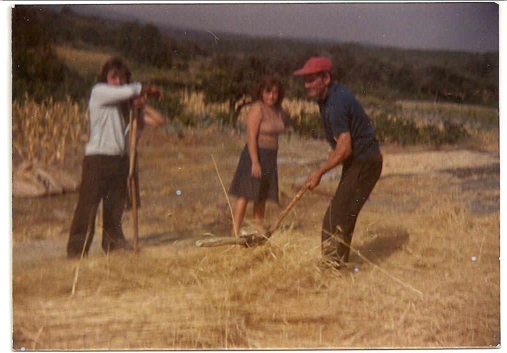 29a46390db ... algumas fotografias de coisas nossas que um dia já foram assim e que ao  mesmo tempo retratam aspectos importantes do passado colectivo da nossa  aldeia.