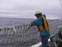 大海原の船上。ヘルメットを被った大金さん、船べりから手を出して調査中
