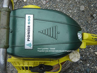 Pionner 650 chainsaw