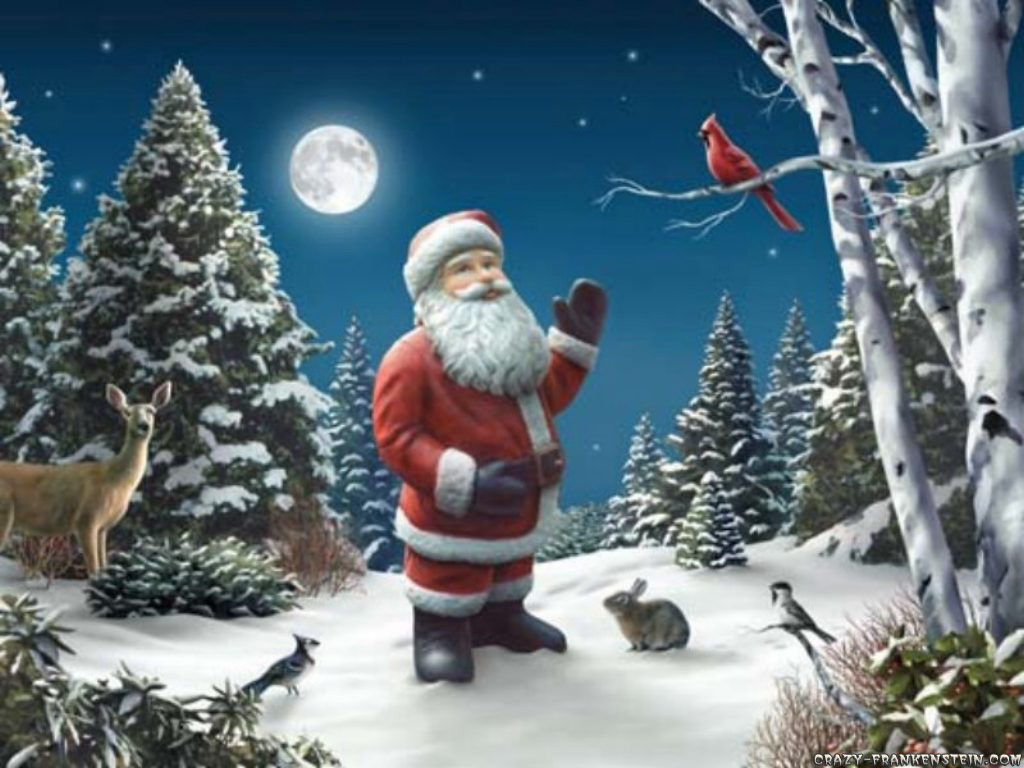 3d Xmas Tree Live Wallpaper Animals Zoo Park Christmas Tree Santa Claus Wallpapers
