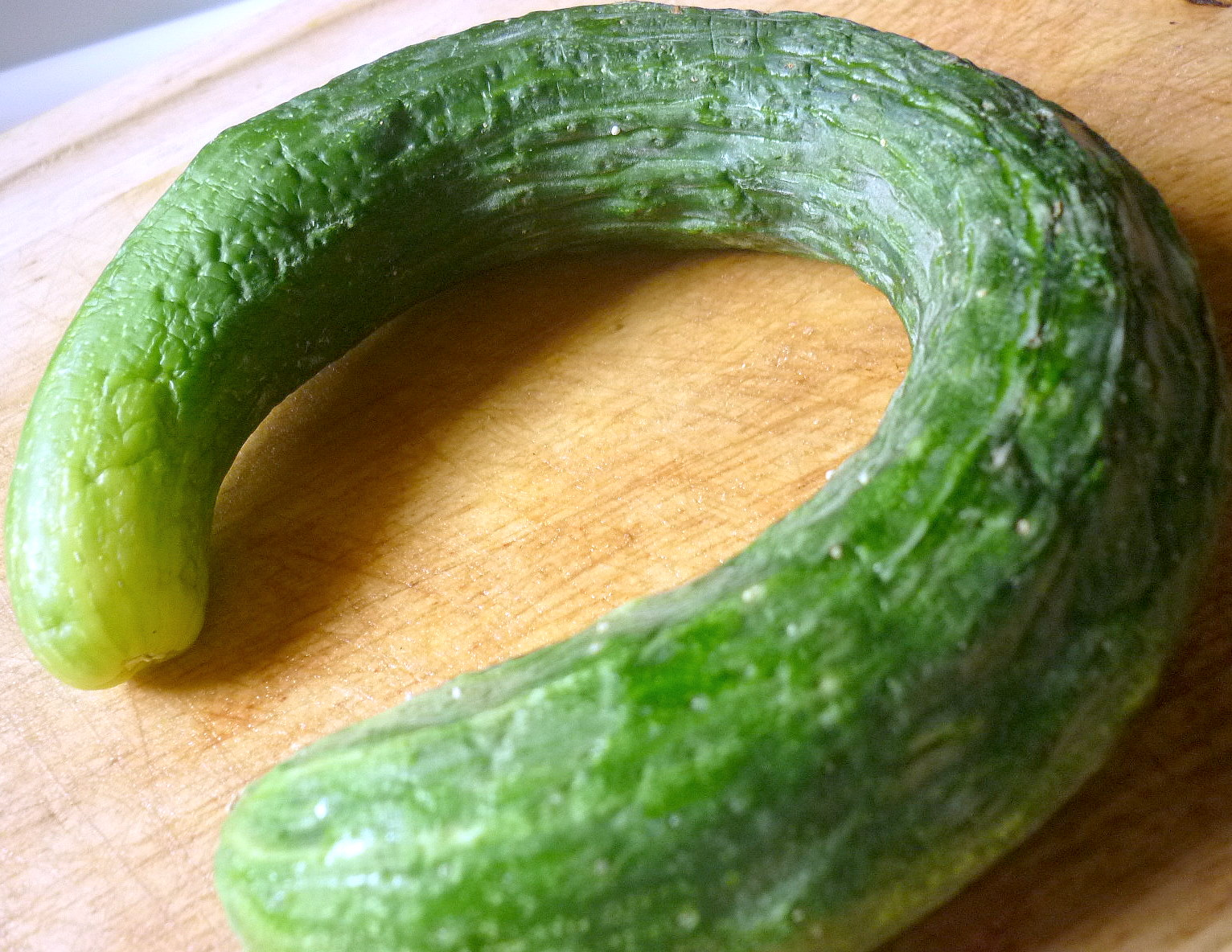 Asian Cucumbers 56