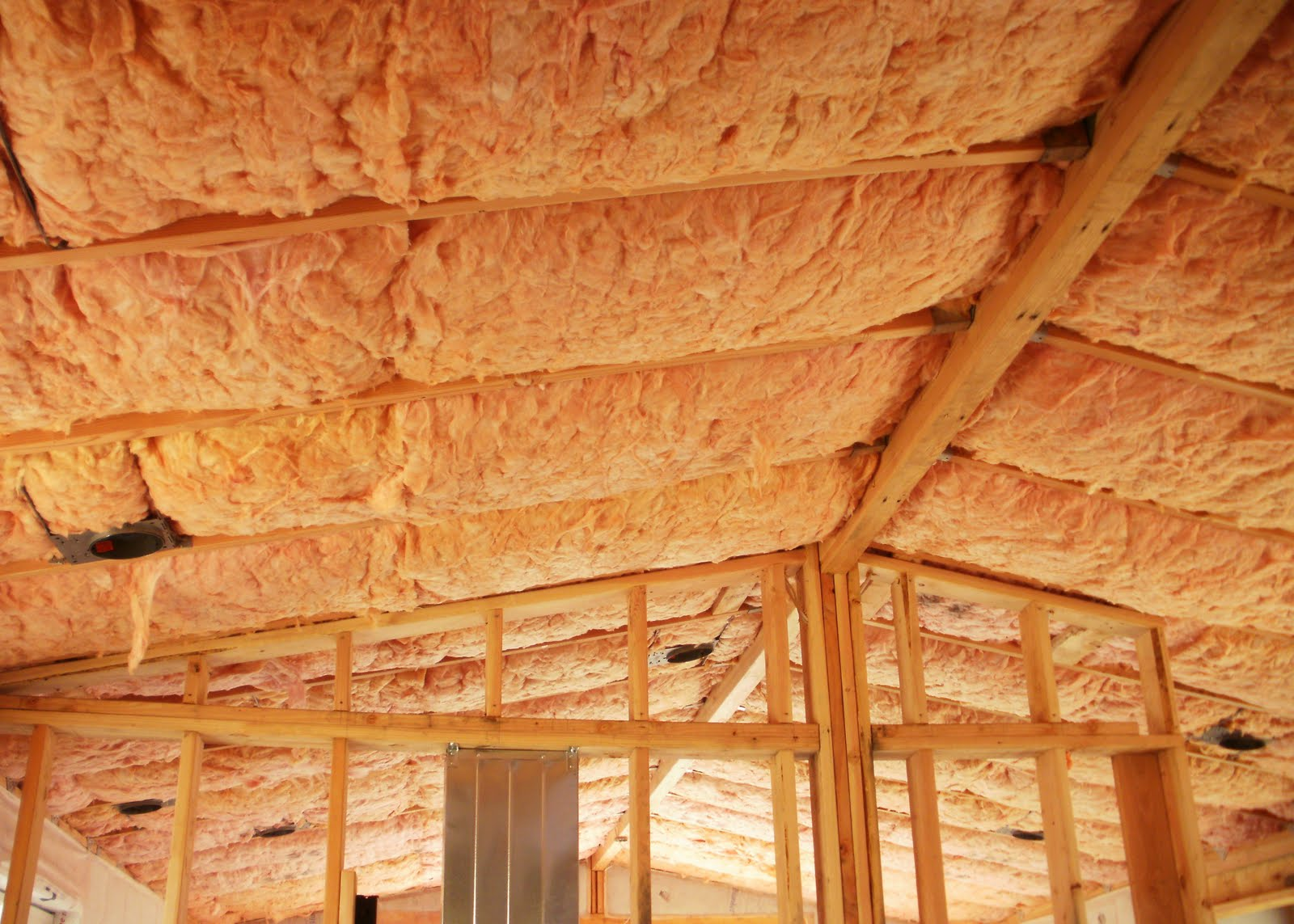 Barry's Dream House: Insulation