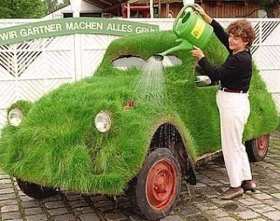 15 Cool Grass Covered Cars (16) 11