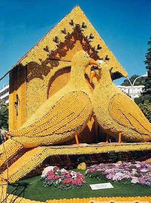 birds made out of oranges
