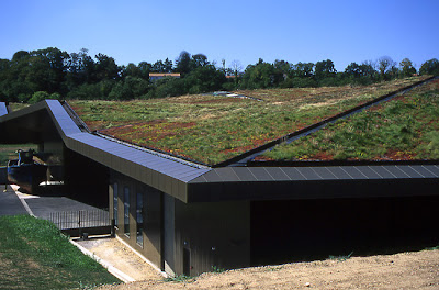 Cool and Creative Green Roofs (21)  1